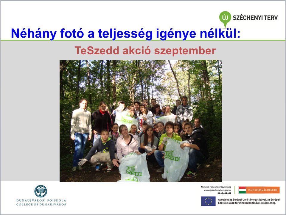 Néhány fotó a teljesség igénye nélkül: TeSzedd akció szeptember