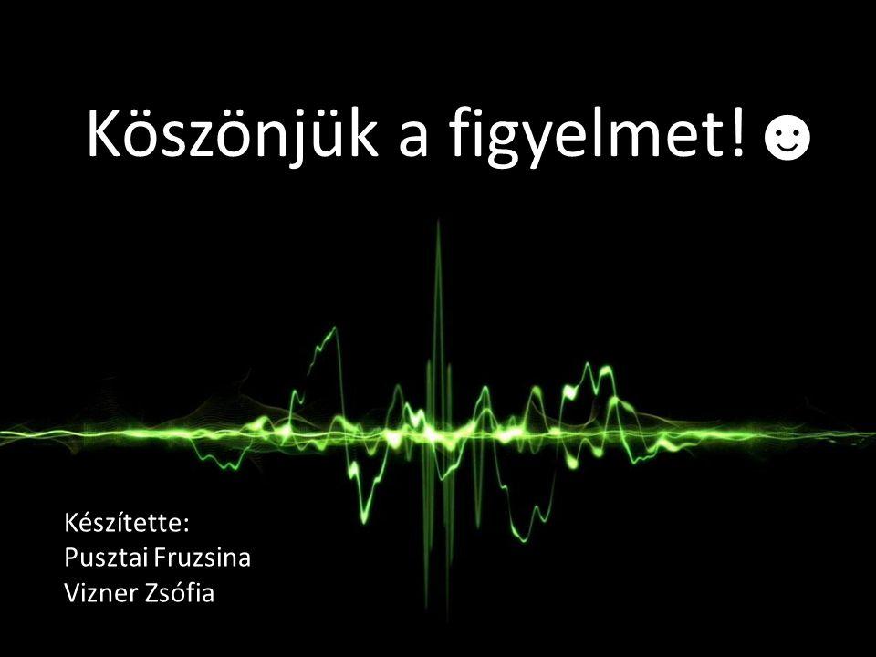 Köszönjük a figyelmet! ☻ Készítette: Pusztai Fruzsina Vizner Zsófia