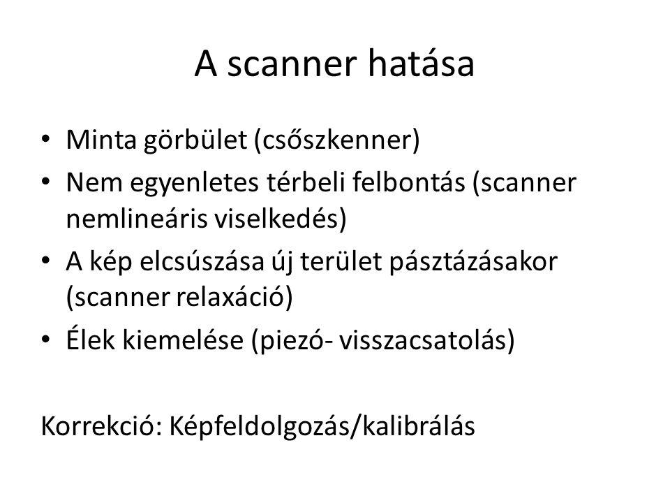 A scanner hatása Minta görbület (csőszkenner) Nem egyenletes térbeli felbontás (scanner nemlineáris viselkedés) A kép elcsúszása új terület pásztázásakor (scanner relaxáció) Élek kiemelése (piezó- visszacsatolás) Korrekció: Képfeldolgozás/kalibrálás