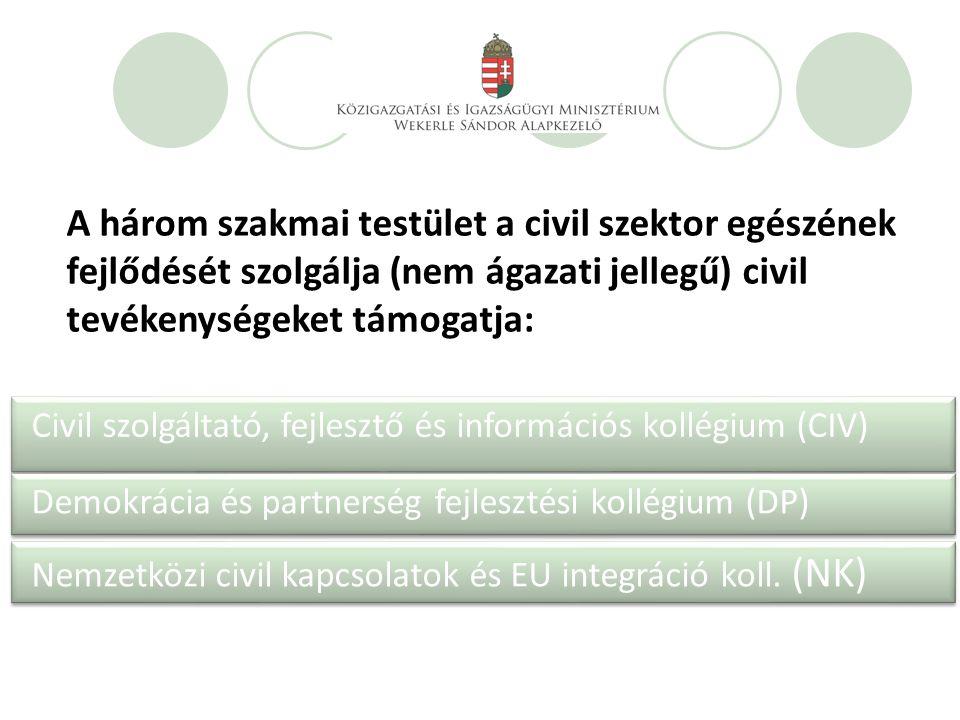 Civil szolgáltató, fejlesztő és információs kollégium (CIV) Demokrácia és partnerség fejlesztési kollégium (DP) Nemzetközi civil kapcsolatok és EU integráció koll.