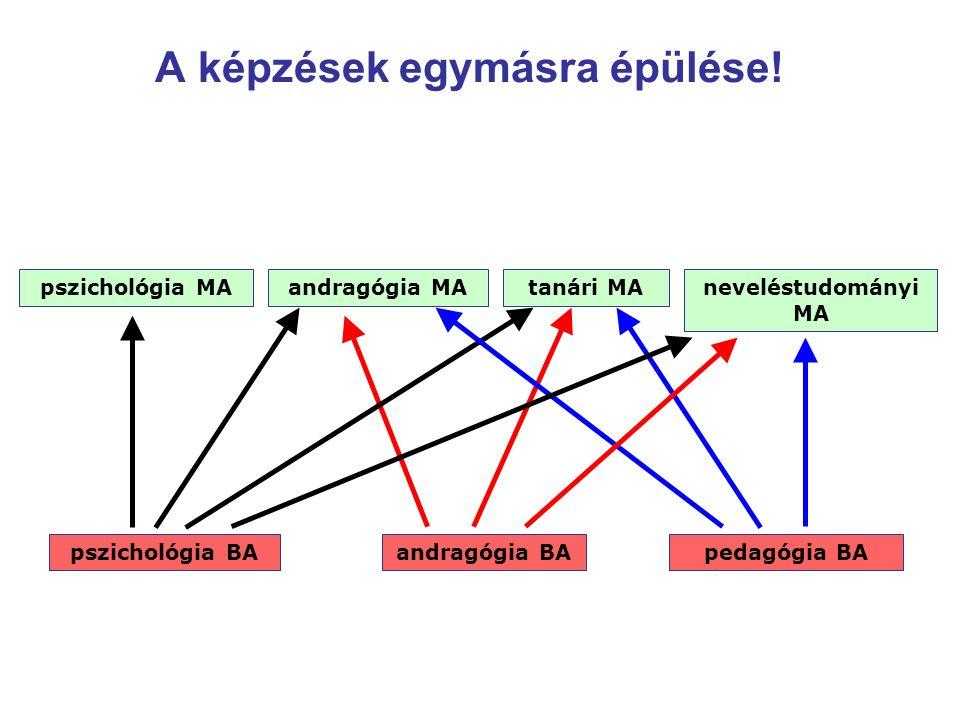 A képzések egymásra épülése! pszichológia BAandragógia BApedagógia BA pszichológia MAandragógia MAneveléstudományi MA tanári MA