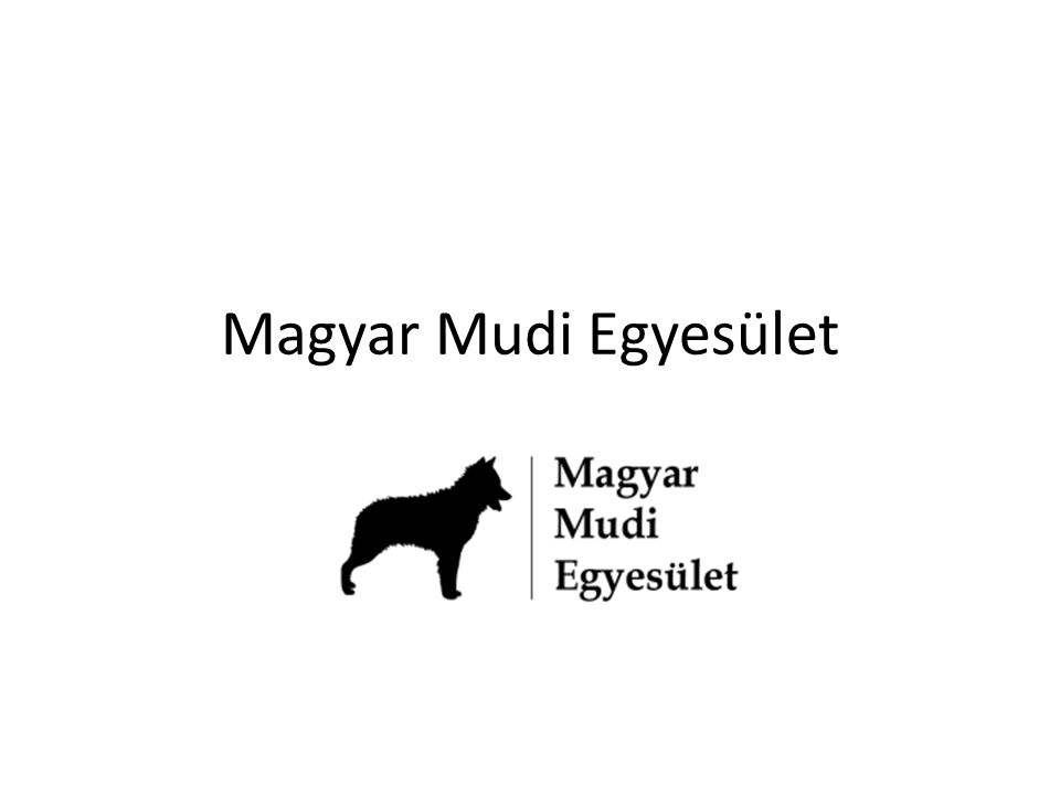 Magyar Mudi Egyesület