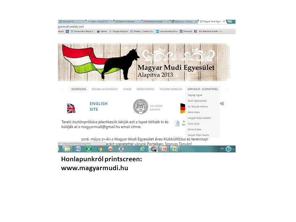 Honlapunkról printscreen: www.magyarmudi.hu