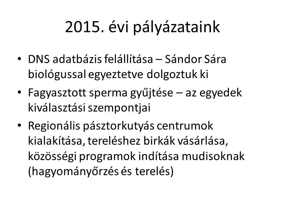 2015.