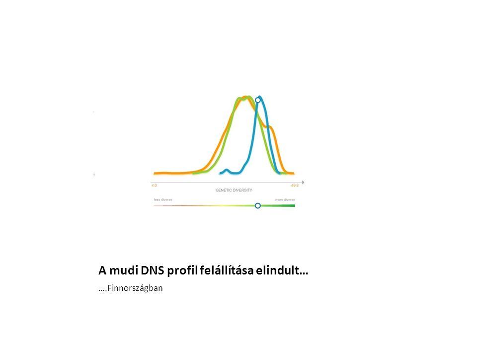 A mudi DNS profil felállítása elindult… ….Finnországban