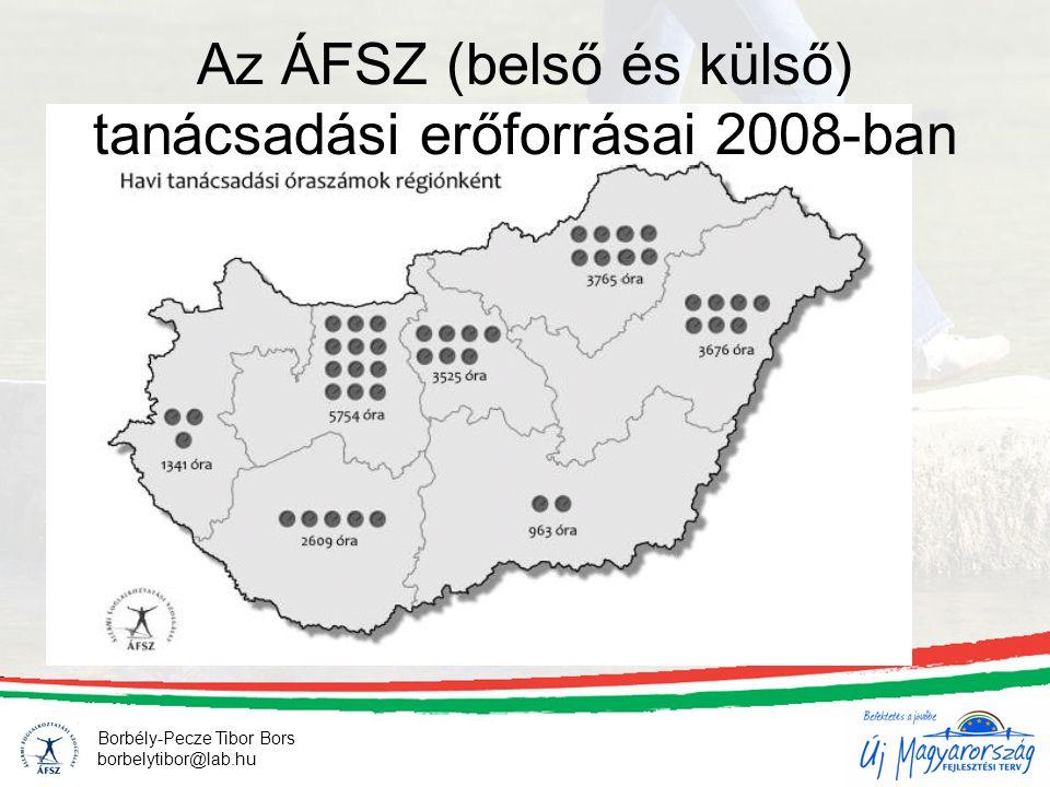 Az ÁFSZ (belső és külső) tanácsadási erőforrásai 2008-ban