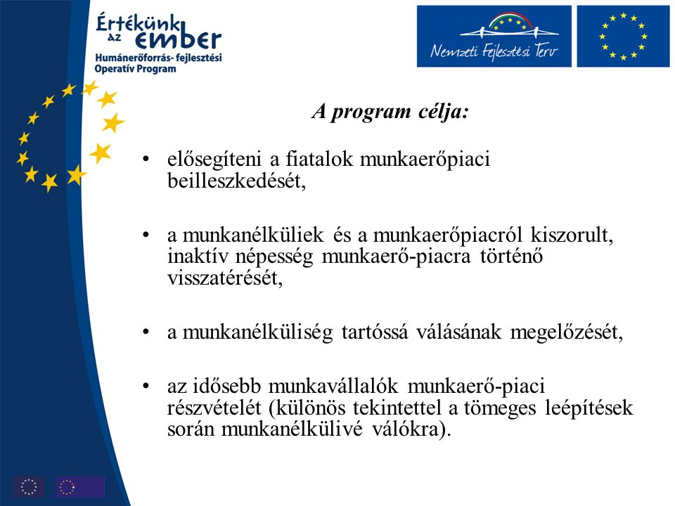 A program célja: elősegíteni a fiatalok munkaerőpiaci beilleszkedését, a munkanélküliek és a munkaerőpiacról kiszorult, inaktív népesség munkaerő-piacra történő visszatérését, a munkanélküliség tartóssá válásának megelőzését, az idősebb munkavállalók munkaerő-piaci részvételét (különös tekintettel a tömeges leépítések során munkanélkülivé válókra).