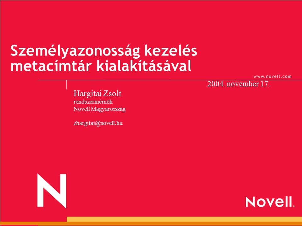 Személyazonosság kezelés metacímtár kialakításával 2004.