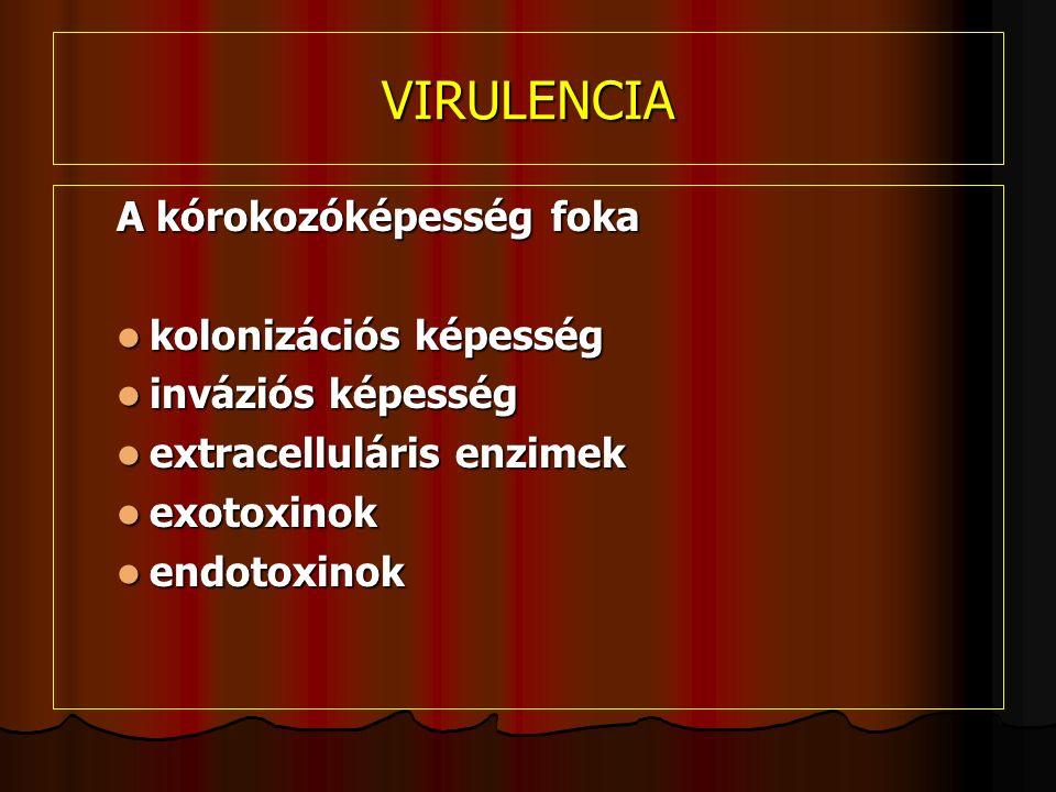 VIRULENCIA A kórokozóképesség foka kolonizációs képesség kolonizációs képesség inváziós képesség inváziós képesség extracelluláris enzimek extracelluláris enzimek exotoxinok exotoxinok endotoxinok endotoxinok