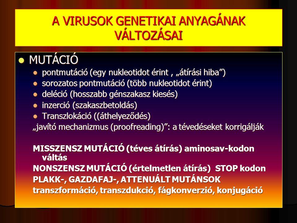 """A VIRUSOK GENETIKAI ANYAGÁNAK VÁLTOZÁSAI MUTÁCIÓ MUTÁCIÓ pontmutáció (egy nukleotidot érint, """"átírási hiba ) pontmutáció (egy nukleotidot érint, """"átírási hiba ) sorozatos pontmutáció (több nukleotidot érint) sorozatos pontmutáció (több nukleotidot érint) deléció (hosszabb génszakasz kiesés) deléció (hosszabb génszakasz kiesés) inzerció (szakaszbetoldás) inzerció (szakaszbetoldás) Transzlokáció ((áthelyeződés) Transzlokáció ((áthelyeződés) """"javító mechanizmus (proofreading) : a tévedéseket korrigálják MISSZENSZ MUTÁCIÓ (téves átírás) aminosav-kodon váltás NONSZENSZ MUTÁCIÓ (értelmetlen átírás) STOP kodon PLAKK-, GAZDAFAJ-, ATTENUÁLT MUTÁNSOK transzformáció, transzdukció, fágkonverzió, konjugáció"""