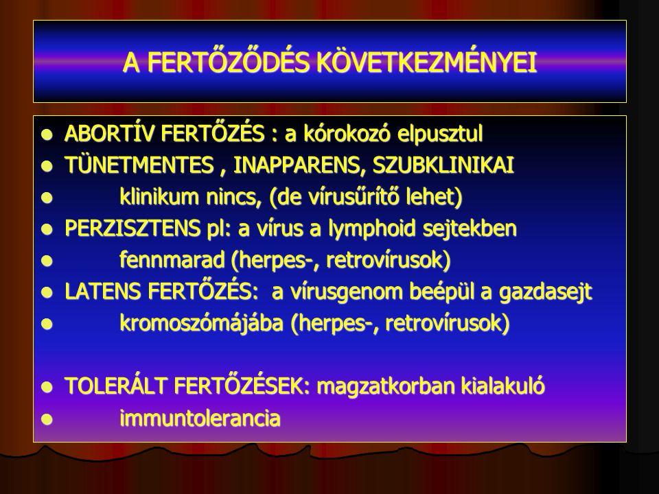 A FERTŐZŐDÉS KÖVETKEZMÉNYEI ABORTÍV FERTŐZÉS : a kórokozó elpusztul ABORTÍV FERTŐZÉS : a kórokozó elpusztul TÜNETMENTES, INAPPARENS, SZUBKLINIKAI TÜNETMENTES, INAPPARENS, SZUBKLINIKAI klinikum nincs, (de vírusűrítő lehet) klinikum nincs, (de vírusűrítő lehet) PERZISZTENS pl: a vírus a lymphoid sejtekben PERZISZTENS pl: a vírus a lymphoid sejtekben fennmarad (herpes-, retrovírusok) fennmarad (herpes-, retrovírusok) LATENS FERTŐZÉS: a vírusgenom beépül a gazdasejt LATENS FERTŐZÉS: a vírusgenom beépül a gazdasejt kromoszómájába (herpes-, retrovírusok) kromoszómájába (herpes-, retrovírusok) TOLERÁLT FERTŐZÉSEK: magzatkorban kialakuló TOLERÁLT FERTŐZÉSEK: magzatkorban kialakuló immuntolerancia immuntolerancia
