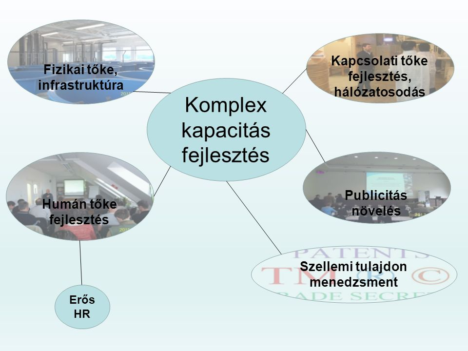 Komplex kapacitás fejlesztés Humán tőke fejlesztés Fizikai tőke, infrastruktúra Kapcsolati tőke fejlesztés, hálózatosodás Publicitás növelés Szellemi tulajdon menedzsment Erős HR