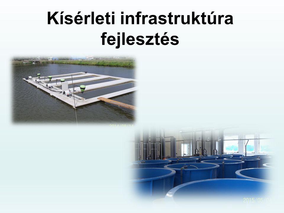 Kísérleti infrastruktúra fejlesztés