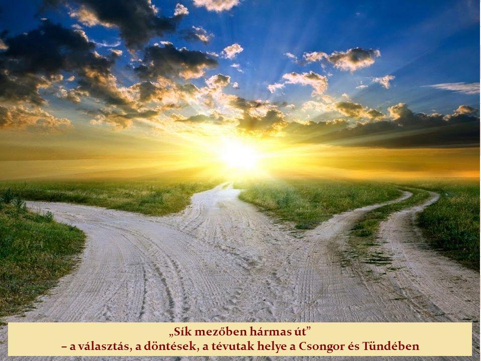 Mindkét mű mesei-mitikus elemekkel keresi a választ az emberiség örök kérdéseire – Mi a boldogság.