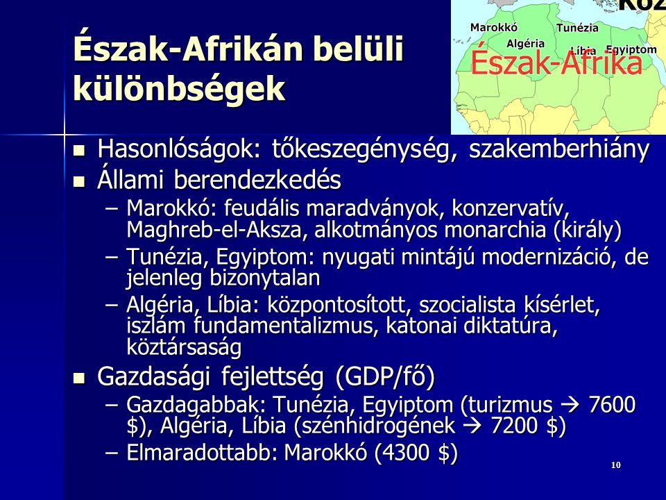 1010 Észak-Afrikán belüli különbségek Hasonlóságok: tőkeszegénység, szakemberhiány Hasonlóságok: tőkeszegénység, szakemberhiány Állami berendezkedés Állami berendezkedés –Marokkó: feudális maradványok, konzervatív, Maghreb-el-Aksza, alkotmányos monarchia (király) –Tunézia, Egyiptom: nyugati mintájú modernizáció, de jelenleg bizonytalan –Algéria, Líbia: központosított, szocialista kísérlet, iszlám fundamentalizmus, katonai diktatúra, köztársaság Gazdasági fejlettség (GDP/fő) Gazdasági fejlettség (GDP/fő) –Gazdagabbak: Tunézia, Egyiptom (turizmus  7600 $), Algéria, Líbia (szénhidrogének  7200 $) –Elmaradottabb: Marokkó (4300 $)