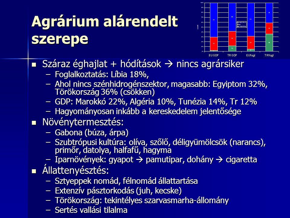 Agrárium alárendelt szerepe Száraz éghajlat + hódítások  nincs agrársiker Száraz éghajlat + hódítások  nincs agrársiker –Foglalkoztatás: Líbia 18%, –Ahol nincs szénhidrogénszektor, magasabb: Egyiptom 32%, Törökország 36% (csökken) –GDP: Marokkó 22%, Algéria 10%, Tunézia 14%, Tr 12% –Hagyományosan inkább a kereskedelem jelentősége Növénytermesztés: Növénytermesztés: –Gabona (búza, árpa) –Szubtrópusi kultúra: olíva, szőlő, déligyümölcsök (narancs), primőr, datolya, halfafű, hagyma –Iparnövények: gyapot  pamutipar, dohány  cigaretta Állattenyésztés: Állattenyésztés: –Sztyeppek nomád, félnomád állattartása –Extenzív pásztorkodás (juh, kecske) –Törökország: tekintélyes szarvasmarha-állomány –Sertés vallási tilalma