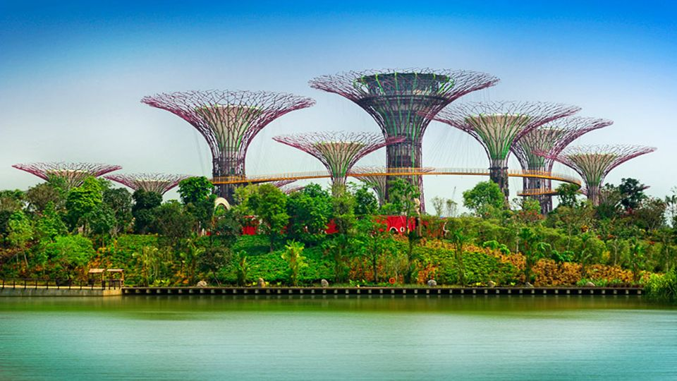 Tegyen egy sétát a Skyway a hosszú sétányon,, magassága 22 méter, amely összeköti a két, a ligetben, és élvezze a kilátást a kert különböző pontjaira.