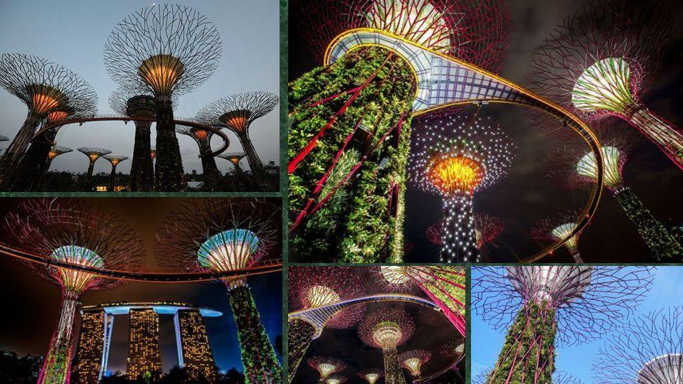 a függőleges kertek sokasága éli funkciókat, beleértve a vetés, a mintázat részt és a munka, mint a motorok az alacsony károsanyag-kibocsátás, a kerte