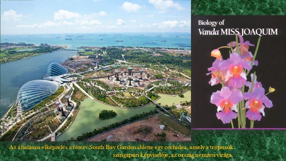 Az általános elképzelés a f ő terv South Bay Garden ihlette egy orchidea, amely a trópusok szingapúri képvisel ő je, az ország nemzeti virága.