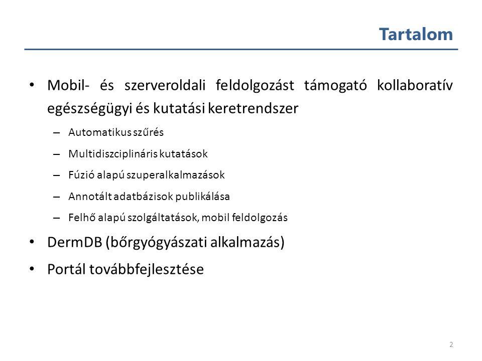 Képi információk hatékony feldolgozása széles társadalmi rétegeket érintő egészségügyi problémákban Hajdu András Debreceni Egyetem, Informatikai Kar 2.