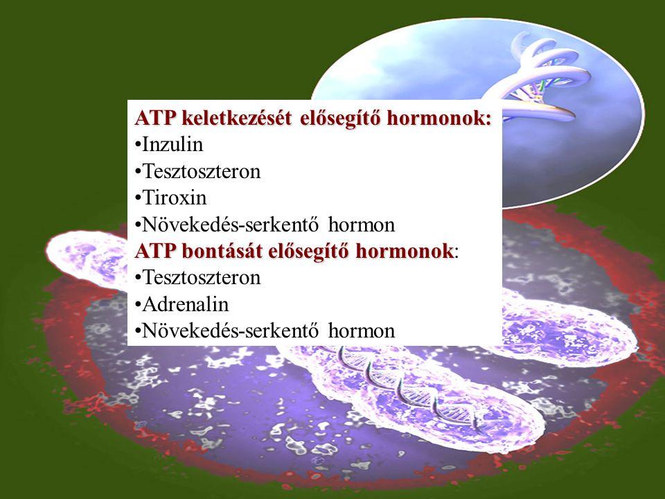Nagy energiájú (makroerg) kötések