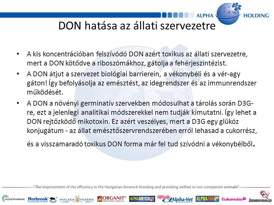 DON hatása az állati szervezetre A kis koncentrációban felszívódó DON azért toxikus az állati szervezetre, mert a DON kötődve a riboszómákhoz, gátolja a fehérjeszintézist.