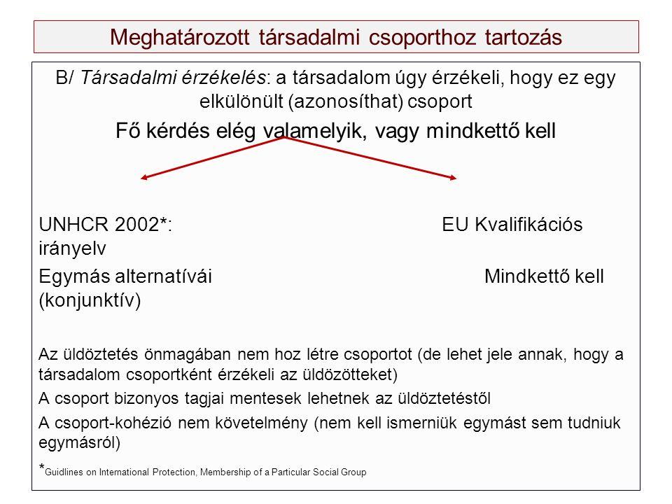 Meghatározott társadalmi csoporthoz tartozás B/ Társadalmi érzékelés: a társadalom úgy érzékeli, hogy ez egy elkülönült (azonosíthat) csoport Fő kérdés elég valamelyik, vagy mindkettő kell UNHCR 2002*: EU Kvalifikációs irányelv Egymás alternatívái Mindkettő kell (konjunktív) Az üldöztetés önmagában nem hoz létre csoportot (de lehet jele annak, hogy a társadalom csoportként érzékeli az üldözötteket) A csoport bizonyos tagjai mentesek lehetnek az üldöztetéstől A csoport-kohézió nem követelmény (nem kell ismerniük egymást sem tudniuk egymásról) * Guidlines on International Protection, Membership of a Particular Social Group