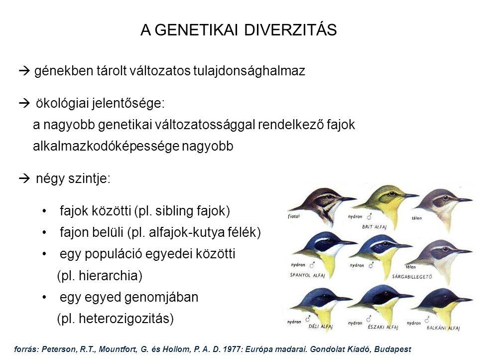 HEFOP 3.3.1. A GENETIKAI DIVERZITÁS  génekben tárolt változatos tulajdonsághalmaz  ökológiai jelentősége: a nagyobb genetikai változatossággal rende