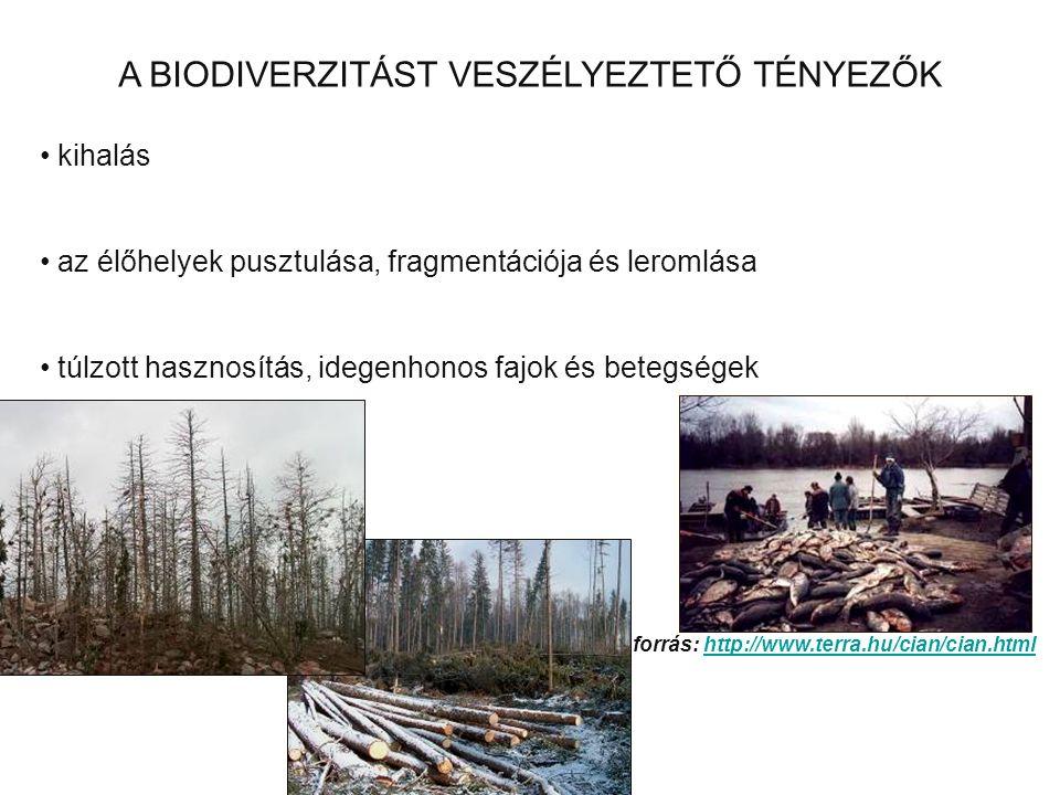 A BIODIVERZITÁST VESZÉLYEZTETŐ TÉNYEZŐK kihalás az élőhelyek pusztulása, fragmentációja és leromlása túlzott hasznosítás, idegenhonos fajok és betegsé
