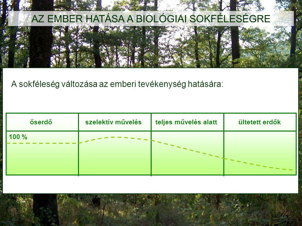 AZ EMBER HATÁSA A BIOLÓGIAI SOKFÉLESÉGRE őserdőszelektív művelésteljes művelés alattültetett erdők 100 % A sokféleség változása az emberi tevékenység