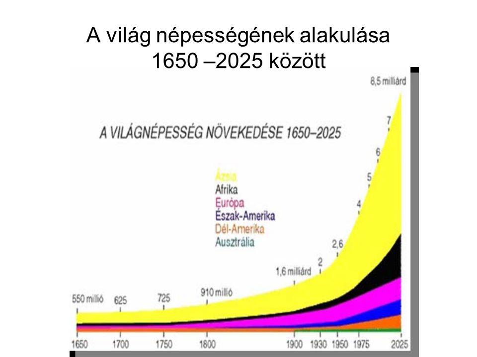 Trendek Forrás:[UN, 2007]