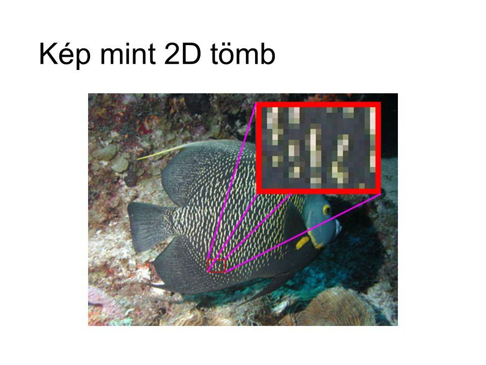 Kép mint 2D tömb