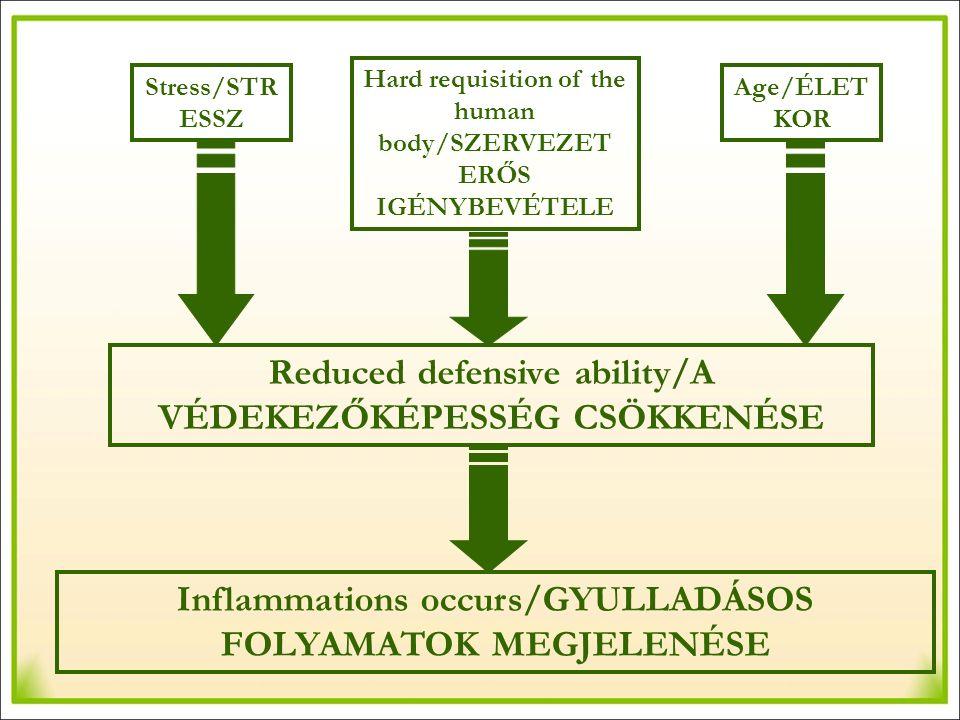 Stress/STR ESSZ Hard requisition of the human body/SZERVEZET ERŐS IGÉNYBEVÉTELE Age/ÉLET KOR Reduced defensive ability/A VÉDEKEZŐKÉPESSÉG CSÖKKENÉSE Inflammations occurs/GYULLADÁSOS FOLYAMATOK MEGJELENÉSE