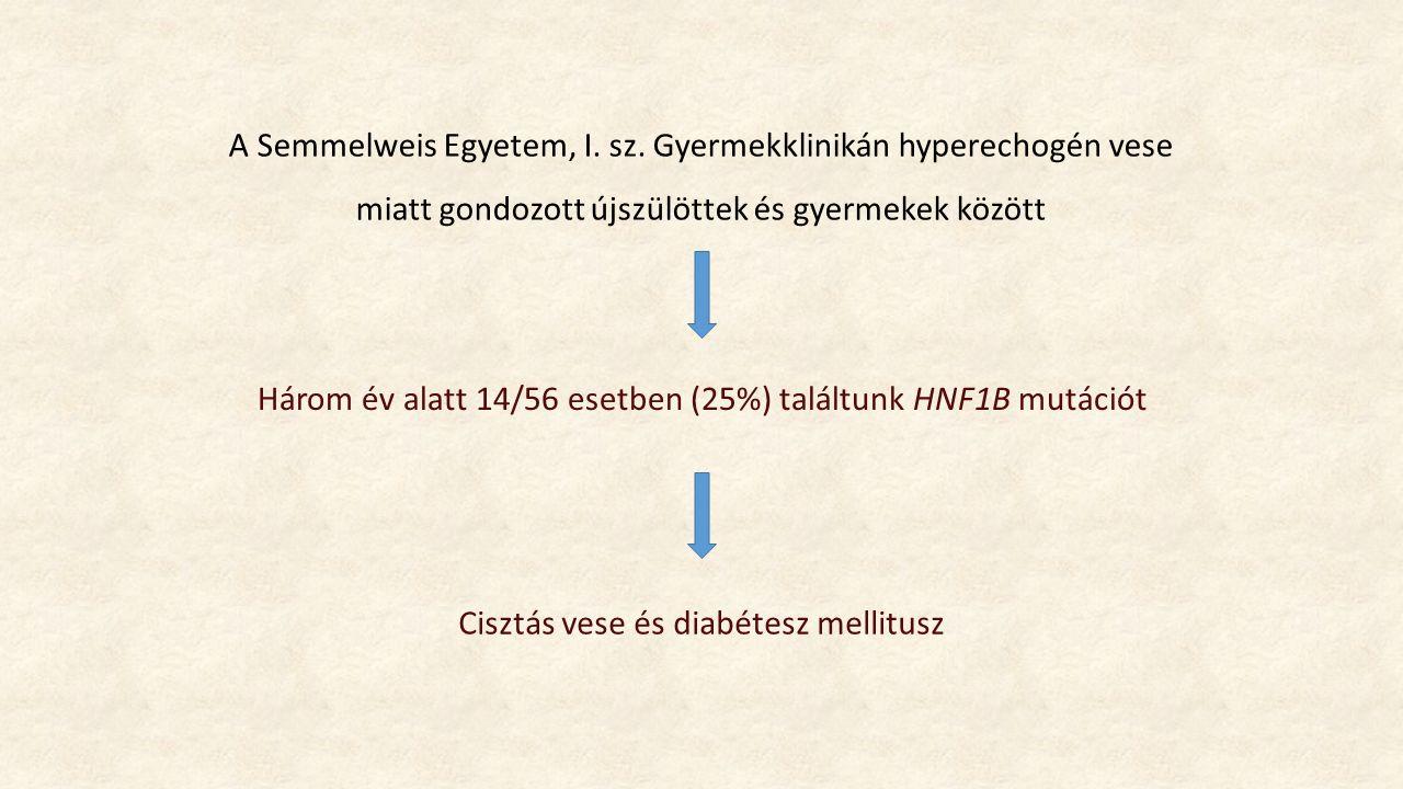 Három év alatt 14/56 esetben (25%) találtunk HNF1B mutációt A Semmelweis Egyetem, I.