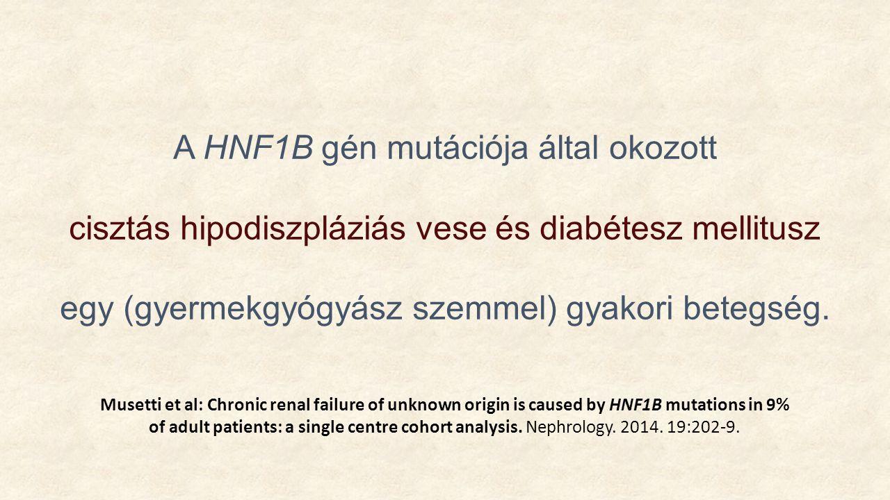 A HNF1B gén mutációja által okozott cisztás hipodiszpláziás vese és diabétesz mellitusz egy (gyermekgyógyász szemmel) gyakori betegség.