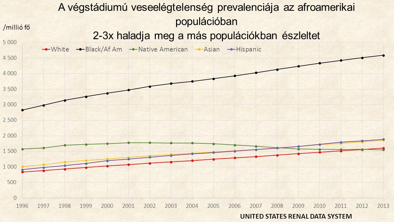 Kiindulási megfigyelés Gyakoribb az afroamerikai populációban a hipertenzív vesekárosodás, az FSGS, illetve a krónikus glomerulonefritisz is Veseérintettség 50x gyakoribb az afroamerikai HIV-fertőzöttek között, mint a kaukázusi HIV- fertőzöttek körében (Eggers, JASN, 2004) Az afroamerikai populációban egyes családokban magas a VVE előfordulási gyakorisága (Freedman, Am J Kidney Dis.