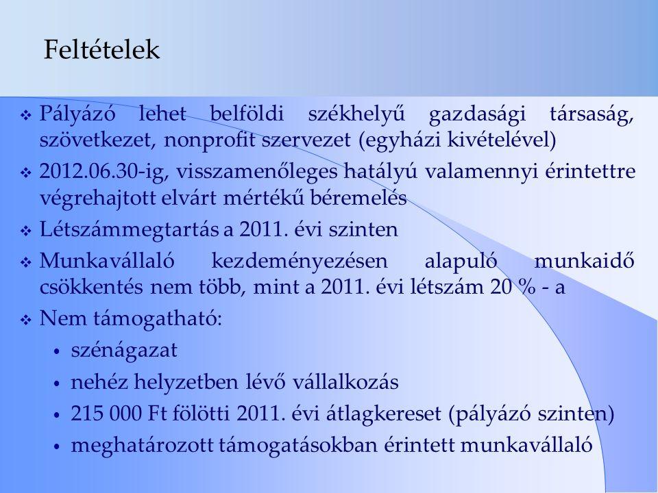 Feltételek  Pályázó lehet belföldi székhelyű gazdasági társaság, szövetkezet, nonprofit szervezet (egyházi kivételével)  2012.06.30-ig, visszamenőleges hatályú valamennyi érintettre végrehajtott elvárt mértékű béremelés  Létszámmegtartás a 2011.