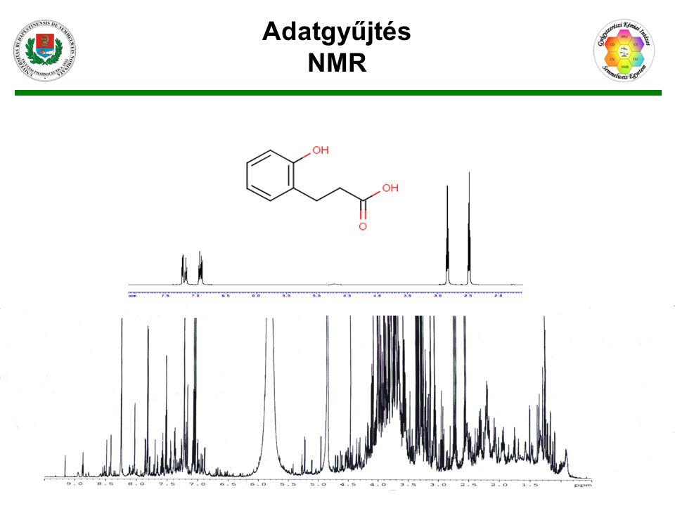 Adatgyűjtés NMR