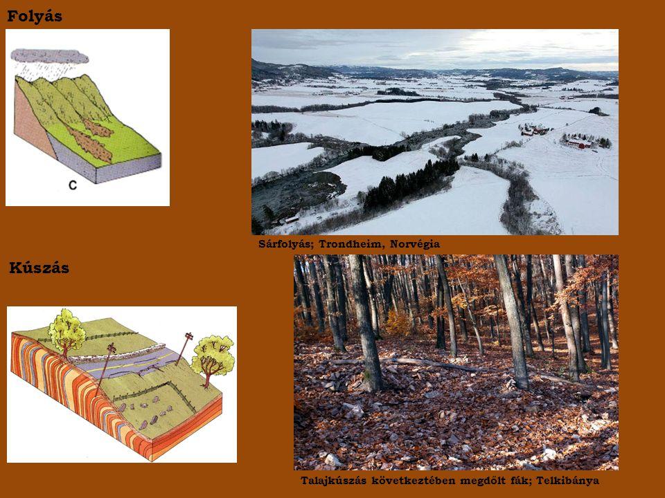 Folyás Kúszás Sárfolyás; Trondheim, Norvégia Talajkúszás következtében megdőlt fák; Telkibánya