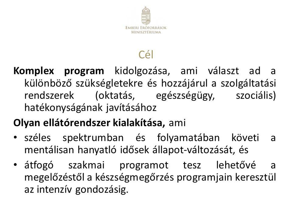 Cél Komplex program kidolgozása, ami választ ad a különböző szükségletekre és hozzájárul a szolgáltatási rendszerek (oktatás, egészségügy, szociális)