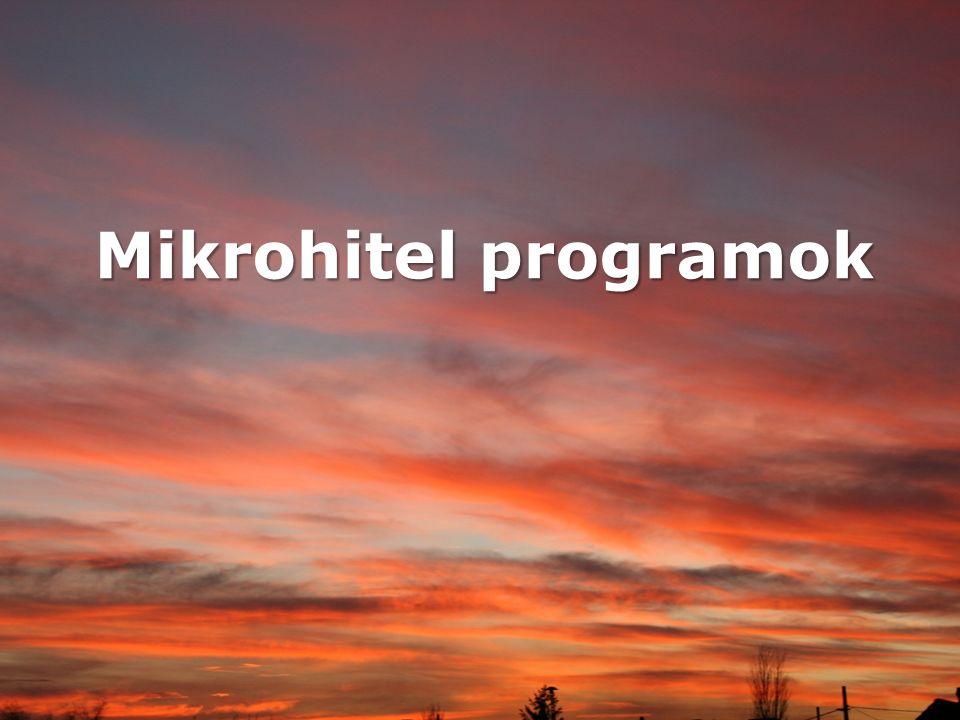 Mikrohitel programok
