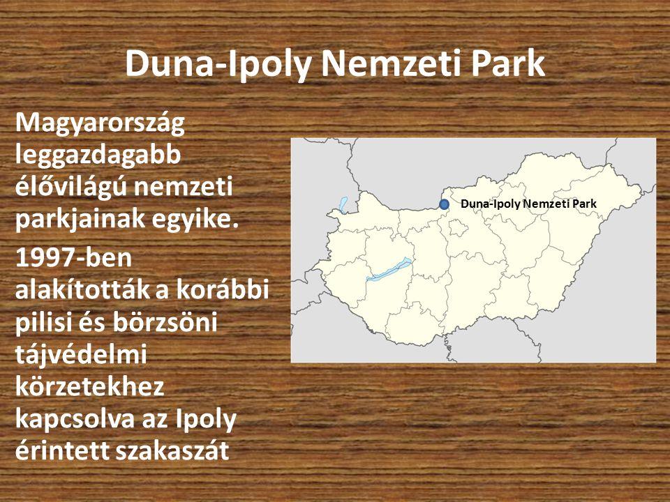 Magyarország leggazdagabb élővilágú nemzeti parkjainak egyike. 1997-ben alakították a korábbi pilisi és börzsöni tájvédelmi körzetekhez kapcsolva az I