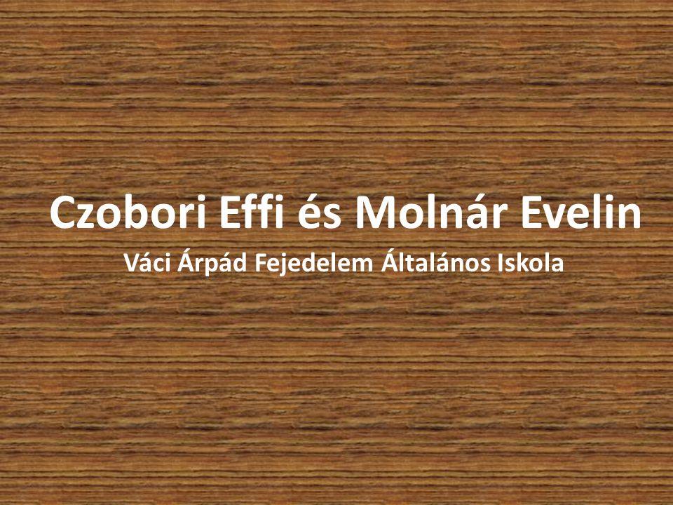 Czobori Effi és Molnár Evelin Váci Árpád Fejedelem Általános Iskola
