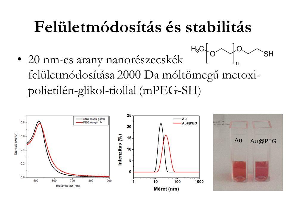 Felületmódosítás és stabilitás 20 nm-es arany nanorészecskék felületmódosítása 2000 Da móltömegű metoxi- polietilén-glikol-tiollal (mPEG-SH) Au Au@PEG