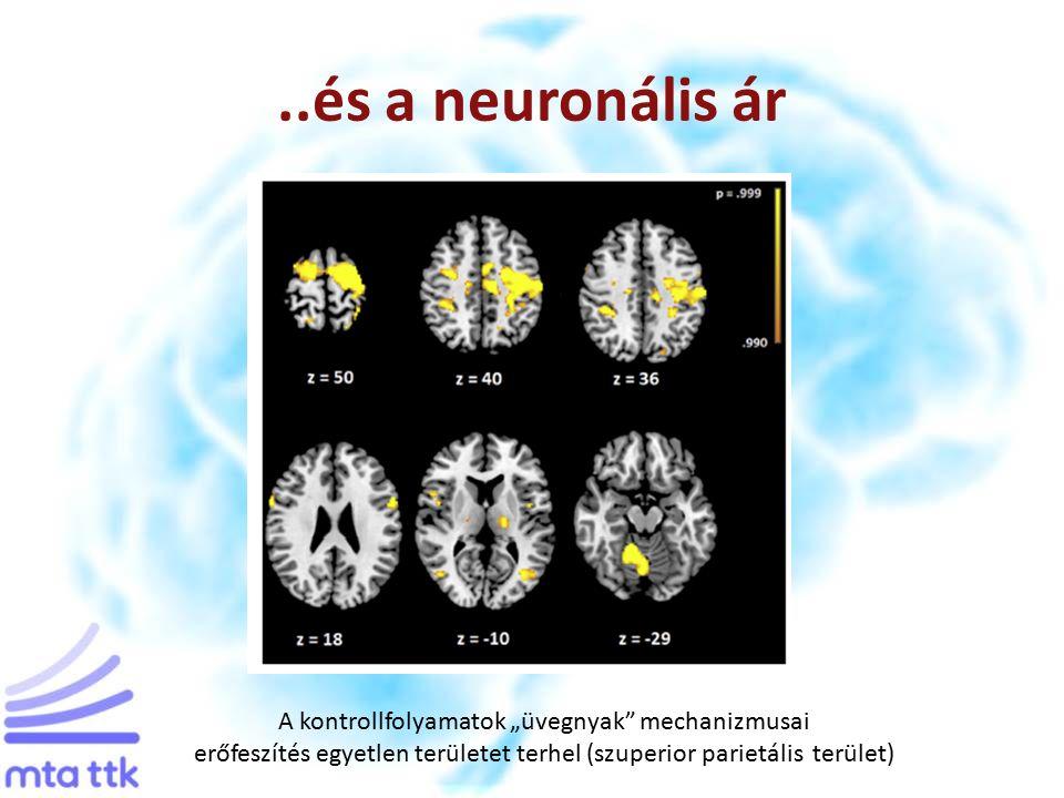 """..és a neuronális ár A kontrollfolyamatok """"üvegnyak mechanizmusai erőfeszítés egyetlen területet terhel (szuperior parietális terület)"""