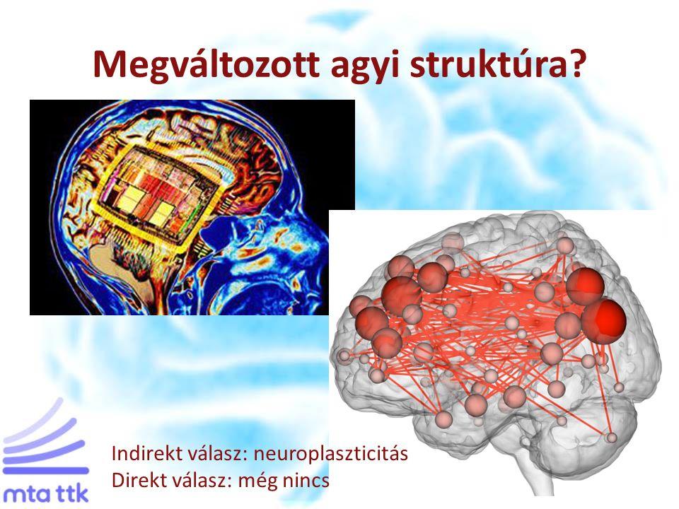 Megváltozott agyi struktúra Indirekt válasz: neuroplaszticitás Direkt válasz: még nincs