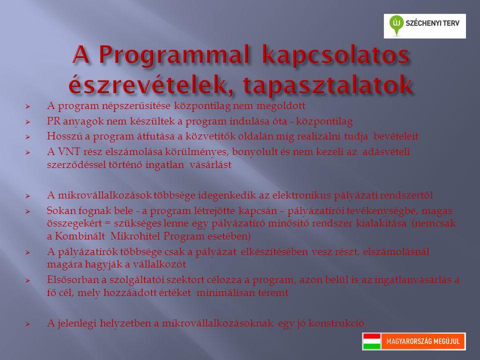 A program népszerűsítése központilag nem megoldott  PR anyagok nem készültek a program indulása óta - központilag  Hosszú a program átfutása a köz