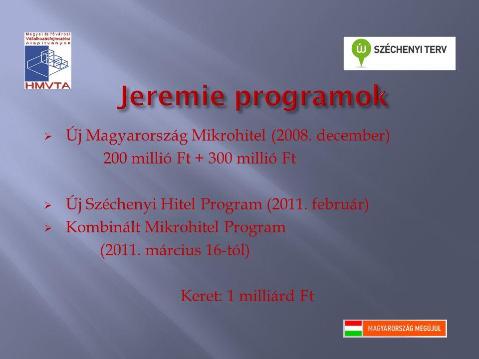  Új Magyarország Mikrohitel (2008. december) 200 millió Ft + 300 millió Ft  Új Széchenyi Hitel Program (2011. február)  Kombinált Mikrohitel Progra