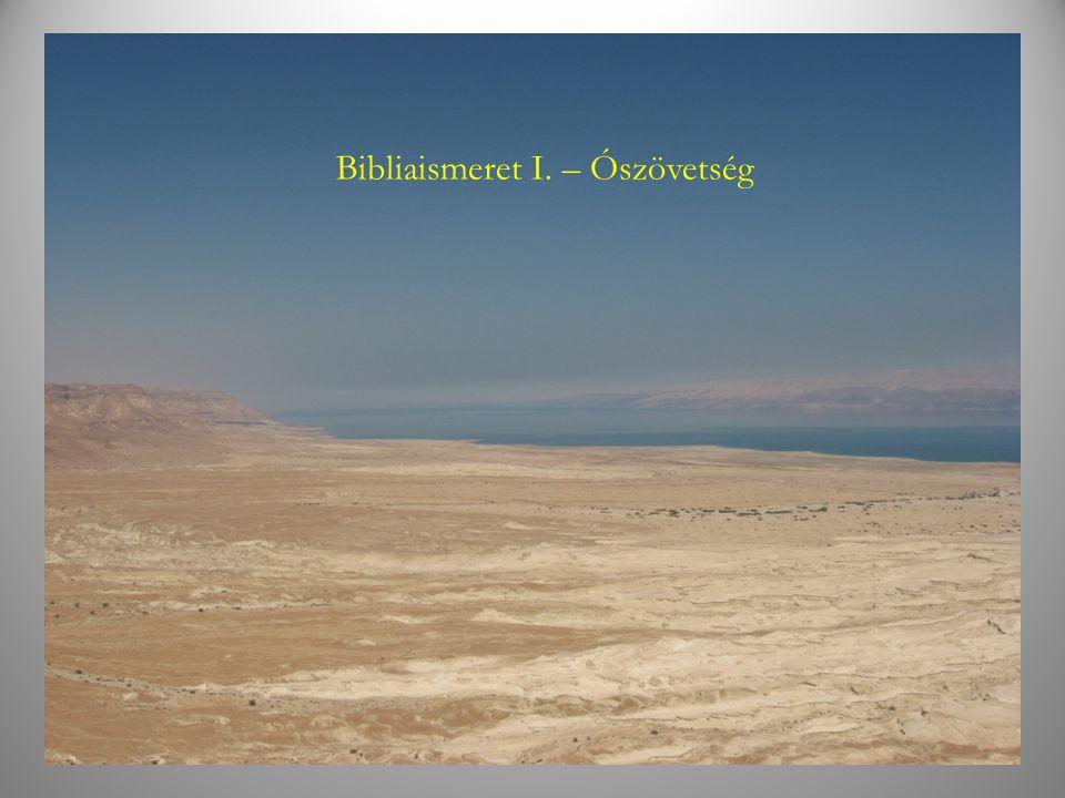 """Az ókori közel Kelet """"nemzetközi úthálózata Az ókori Palesztina elsősorban földrajzi helyzete és úthálózata miatt volt fontos az ókori Kelet birodalmai számára."""