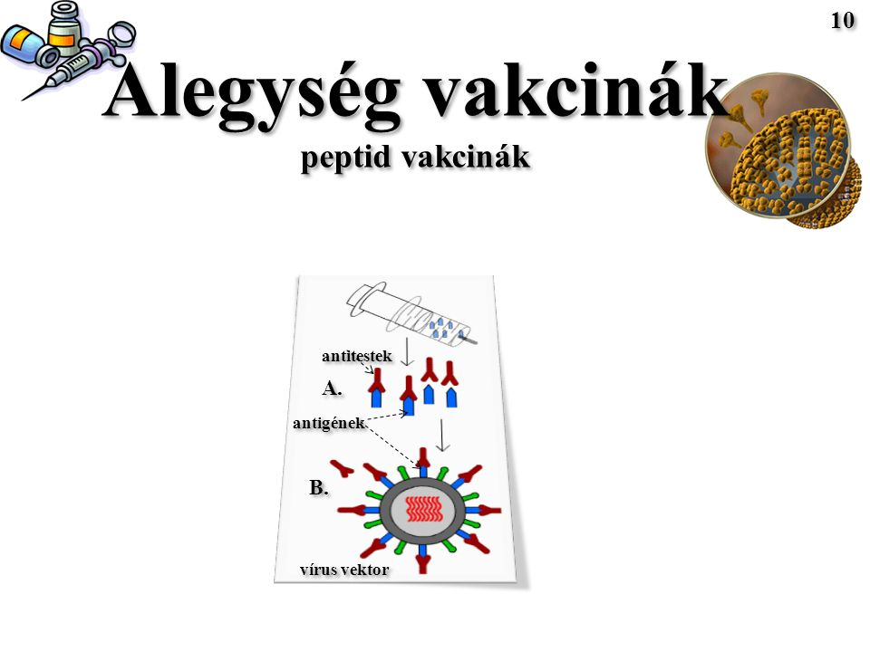 Alegység vakcinák peptid vakcinák Alegység vakcinák peptid vakcinák antigének A.